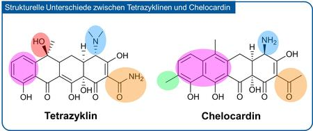 Structural differences between Tetracycline and Chelocardin